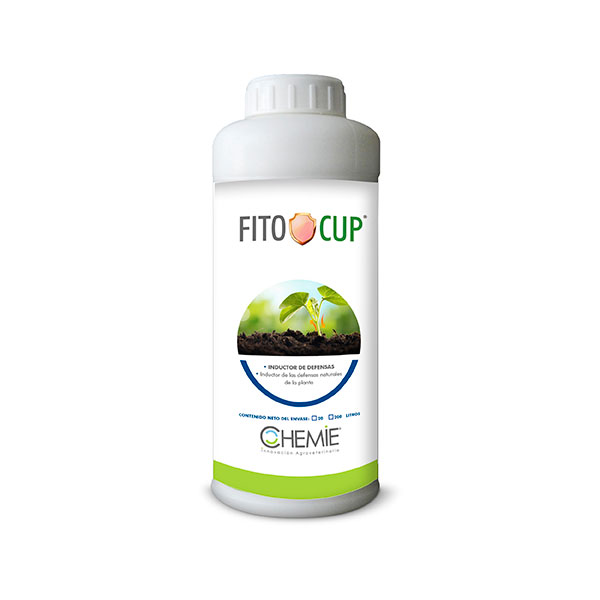 fito-cup